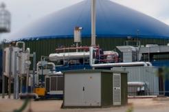 Biogas & Manure